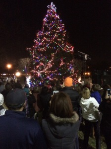 tree-lighting-2015_2
